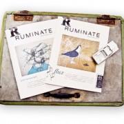 Ruminate1-e1274826179333