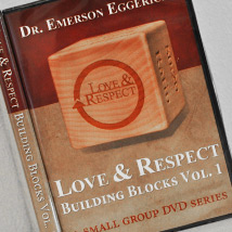 dvds-love-and-respect-now